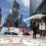 Hong Kong activists protest Japan dolphin hunt