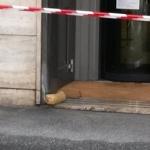 Pacco bomba Deutsche bank