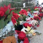 Loris: i 'suoi' due alberi di Natale in paese