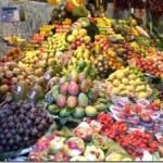 frutta-300x226