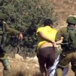 Arresto di Vittorio Fera a Nabi Saleh, nella Palestina occupata (fermo-immagine di filmato tratto da Youtube, credit: David Reeb)