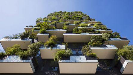 Bonus verde per terrazze e giardini privati – ProgettoItaliaNews