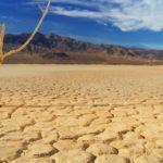 desertificazione-Night for change