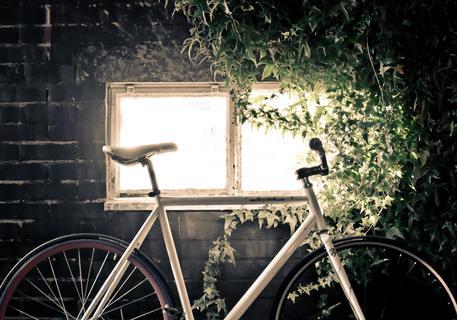 Biciclette produzione Italia 1,26 mld