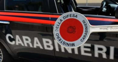 Torino, coltivavano marijuana su un isolotto sul Po: due arresti