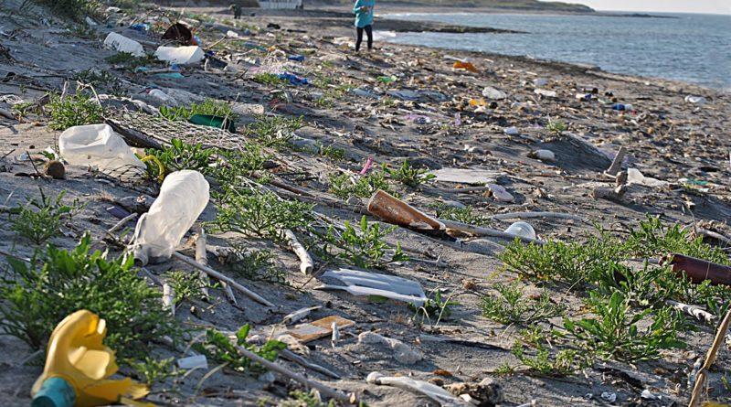 Cina: stretta su plastica,via borse non degradabili entro 2022
