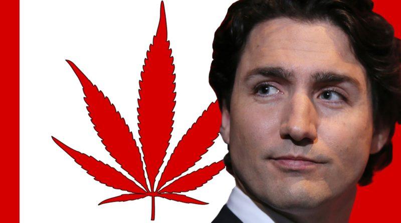 Il Canada legalizza vendita di marijuana per uso ricreativo