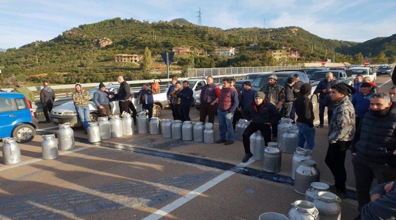 Guerra del Latte, incontro a Cagliari tra i pastori e il ministro Centinaio