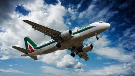 Patuanelli: 'Dai vertici Alitalia un piano rapido, credibile'