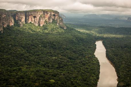 Amazzonia: scontro Macron-Bolsonaro