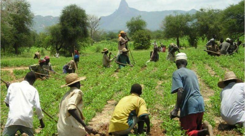 Progetto integrazione immigrati in agricoltura