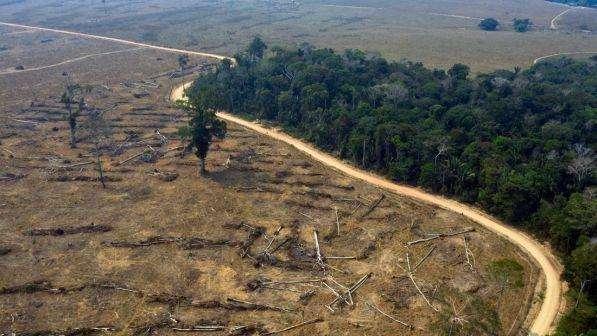 Brasile, spunta un piano segreto di Bolsonaro per costruire in Amazzonia