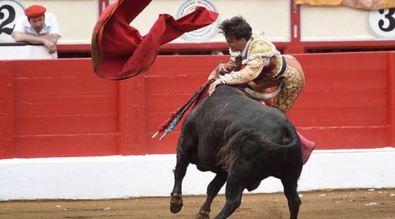 Dramma alla corrida di Saragozza: torero incornato, è in fin di vita