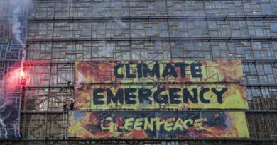 Clima: Greenpeace attacca Green Deal Ue