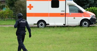 Germania: incidente a scuolabus, 2 morti