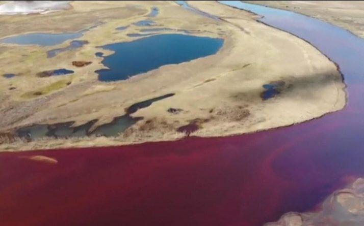 Disatro ambientale in Russia, Putin dichiara lo stato d'emergenza federale
