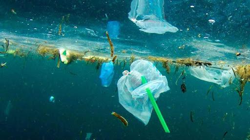 """Greenpeace: """"Picchi di contaminazione microplastiche nel Tirreno"""""""