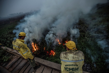Brasile: record incendi nel Pantanal,16 mila da inizio anno
