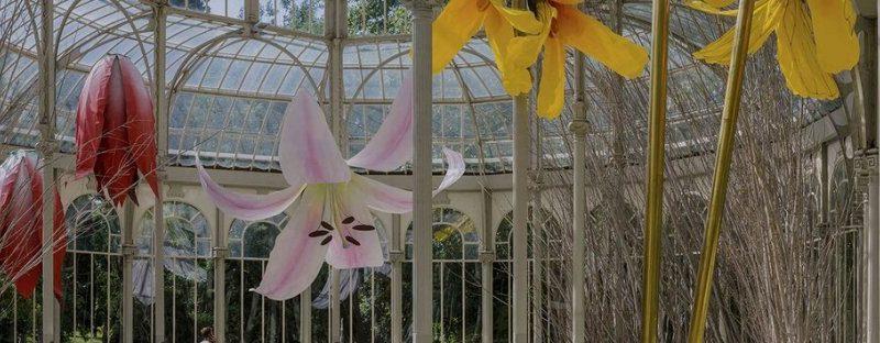 Tartaglia Arte: Petrit Halilaj si ispira all'uccello giardiniere per costruire un gigantesco nido di fiori al Palacio del Cristal del Reina Sofia