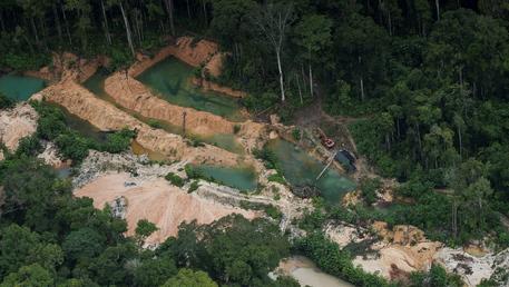 Amazzonia: Bolsonaro, il mio governo protegge la foresta