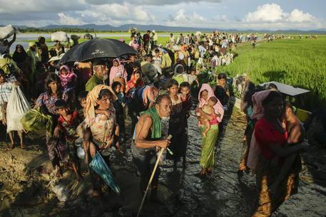 Bangladesh, centinaia Rohingya trasferiti da campi a isola