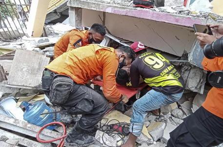 Terremoto in Indonesia, almeno 37 morti e centinaia di feriti