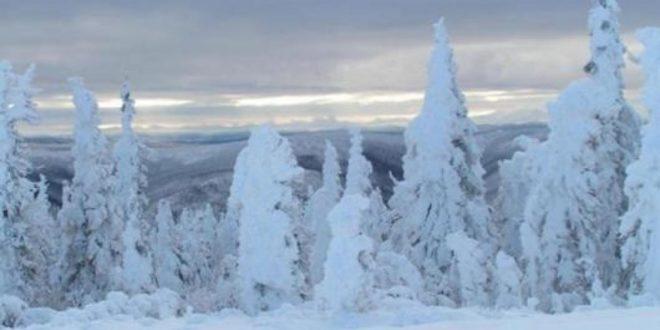 Meteo: Neve  nei prossimi giorni