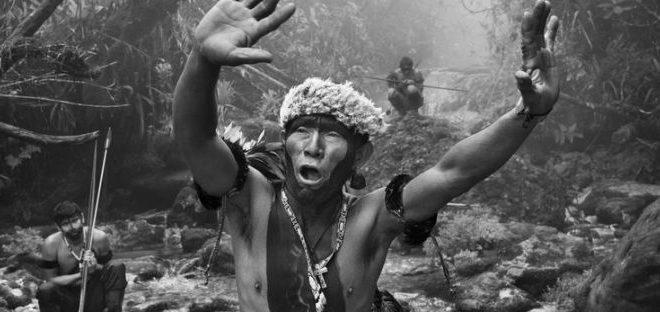 Tartagkia Arte: Ai Maxxi ambizione e impegno ecologista con la mostra Amazônia di Sebastião Salgado